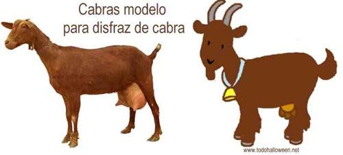 cabra ideas disfraz 1 21 1