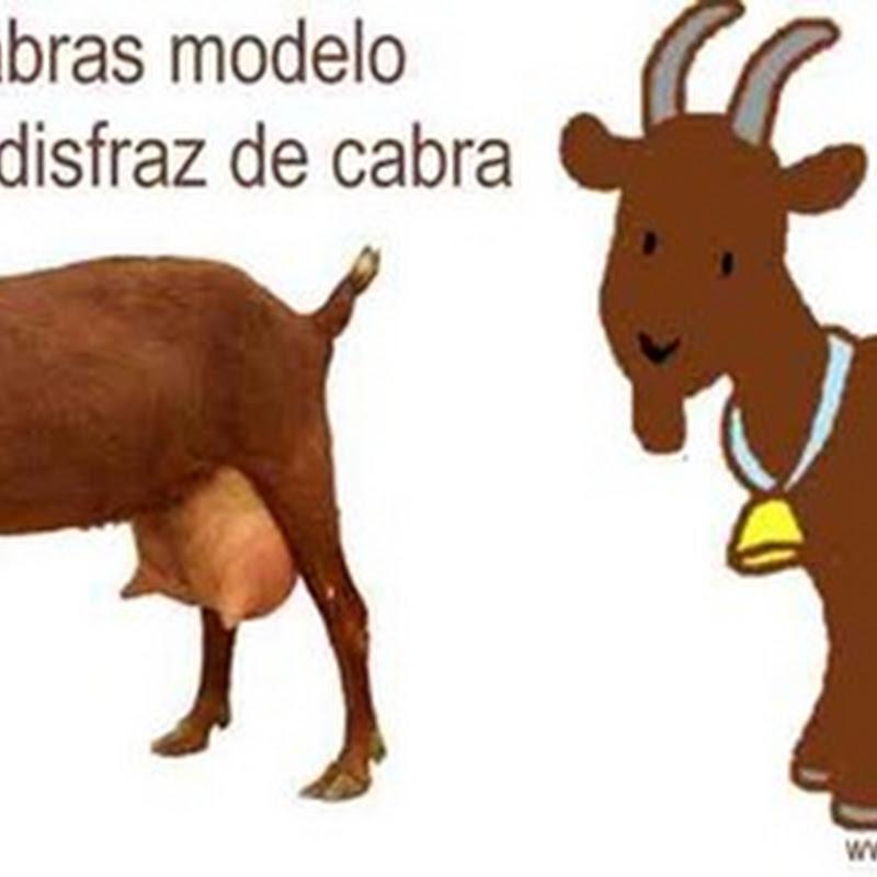 Hacer un disfraz casero de cabra
