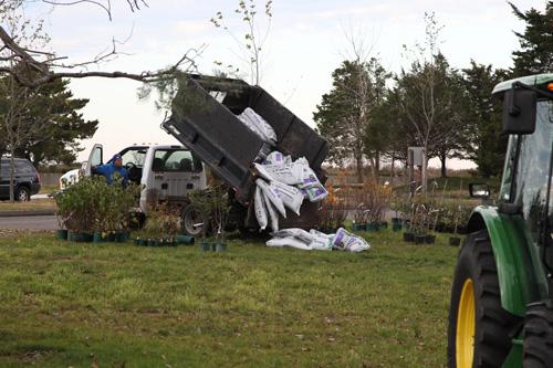 Hammo Fall Planting - Jim Murtagh - BC3G2545.jpg