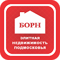 АН БОРН icon