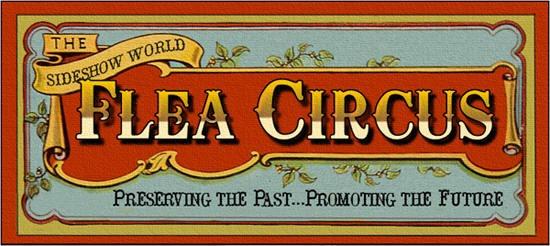 [flea+circus3%5B7%5D]