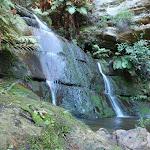 a hidden fall near Lillian's Glen (185160)