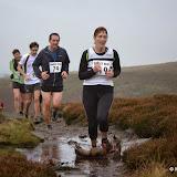 Burley Moor 1
