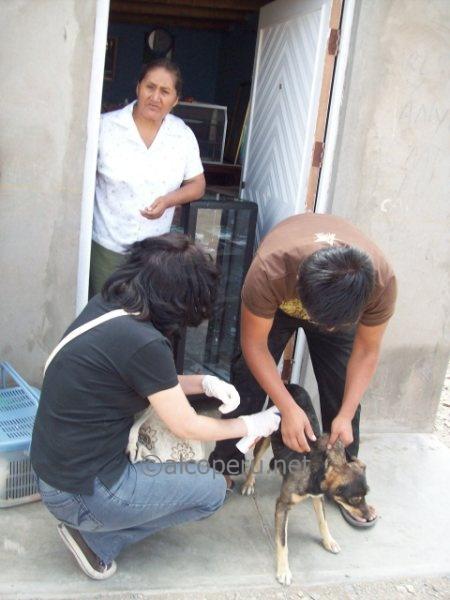 huacho2010 (50)