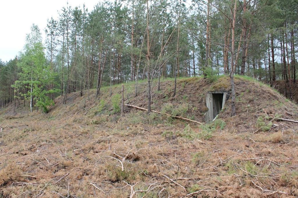 majówka w Pile 27.04 - 06.05.2012 - MAJ%25C3%2593WKA%2B2012%2B2097.JPG