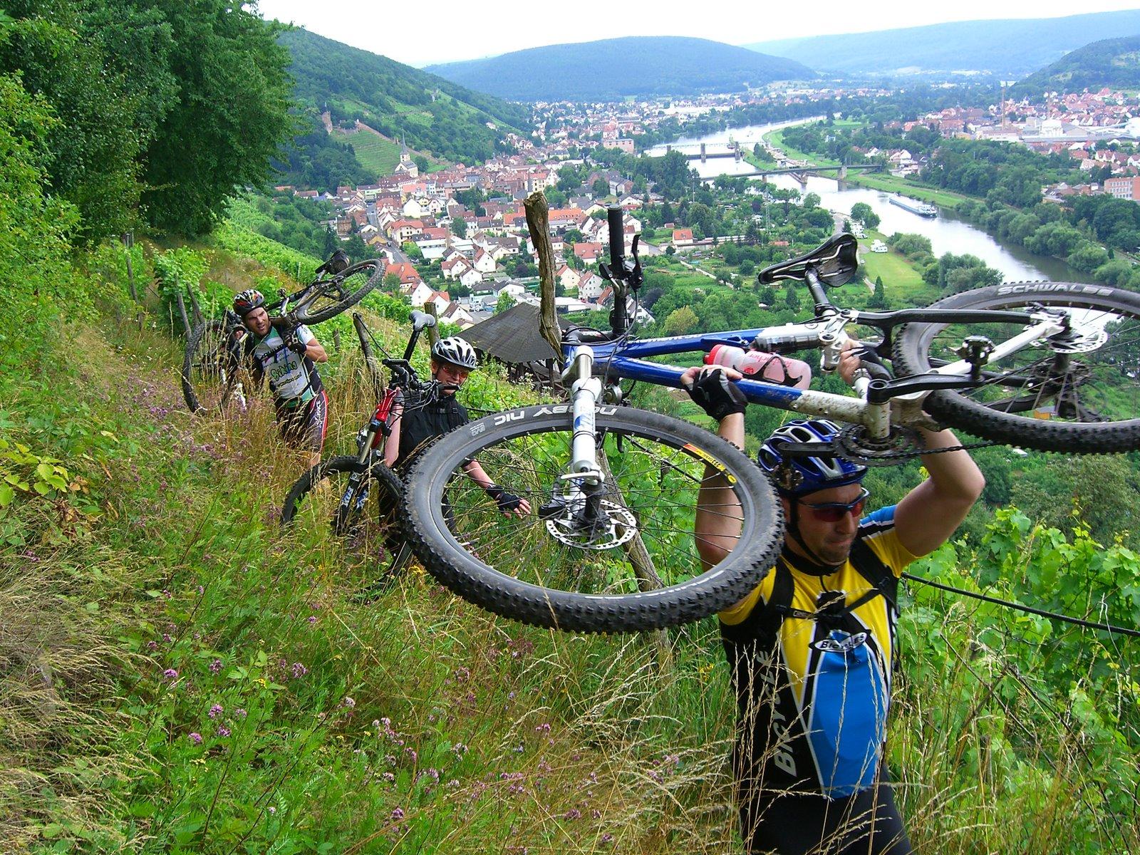 Trailreiche Tour um Klingenberg