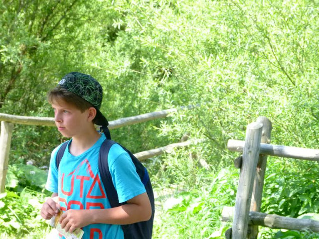 Obóz Ustrzyki 2015 - P1130080_1.JPG