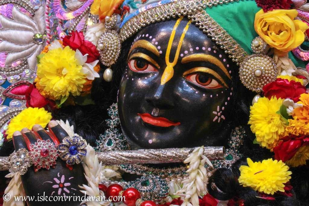 ISKCON Vrindavan Sringar Deity Darshan 17 Dec 2015 (19)