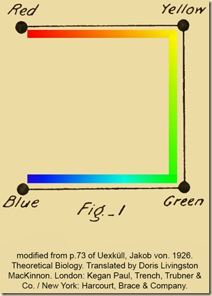 Uexkull. Theoretical Biology. Fig1.Eng.ColorSquare.PS.Yb
