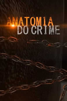 Baixar Série Anatomia do Crime 1ª Temporada Torrent Grátis