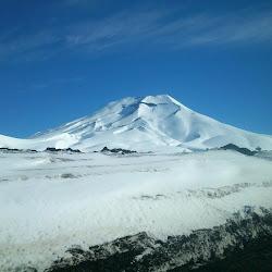 Reserva Nacional Malalcahuello's profile photo