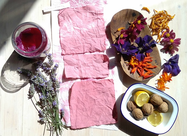 natural dyed fabric and solar dyeing