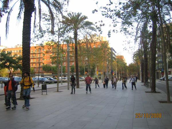 Fotos Ruta Fácil 25-10-2008 - Imagen%2B014.jpg