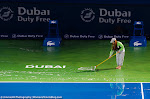 Ambiance - 2016 Dubai Duty Free Tennis Championships -D3M_9647.jpg