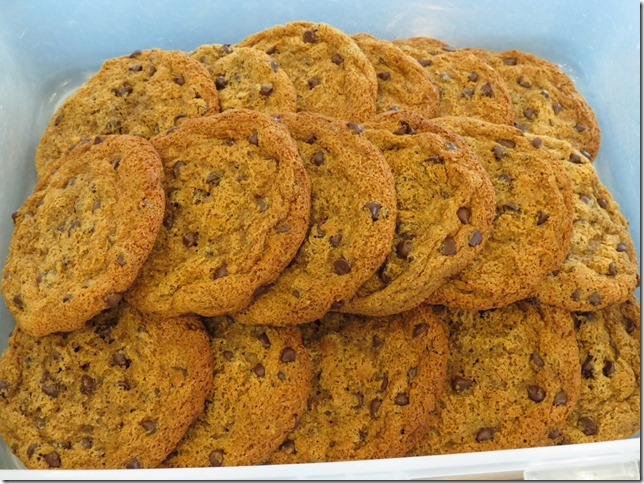 MELT Grain Free Chocolate Chip Cookies 2