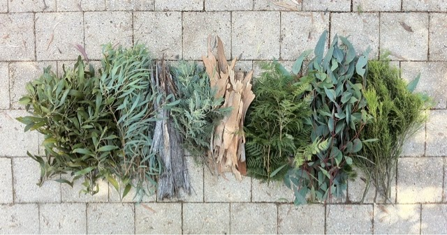 Native Australian plants for natural dyeing by Belinda Evans of Alchemy