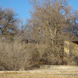 01-05-13 Arbor Hills Nature Preserve - IMGP3966.JPG