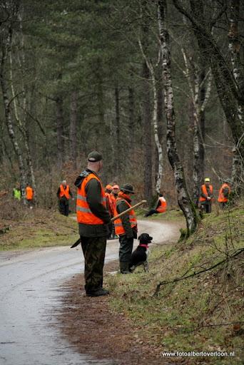vossenjacht in de Bossen van overloon 18-02-2012 (38).JPG