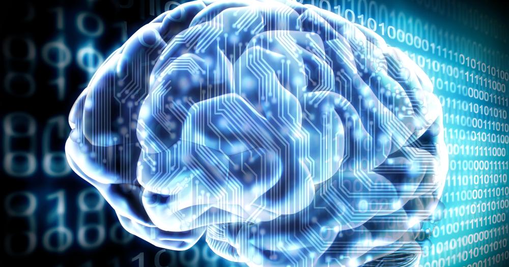 Az agy : Egy titok, amely a tudomány számára hozzáférhetetlen