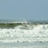 _DSC7967.thumb.jpg