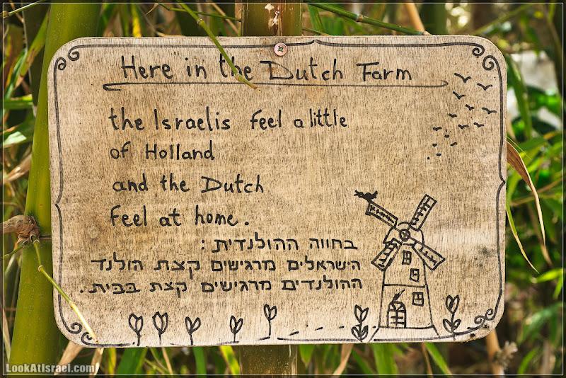 il/דרום אדום   Голландская деревня в поселке Сдэ Цви (20120210 sdetsvi dutch farm 001 4388)
