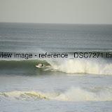 _DSC7271.thumb.jpg