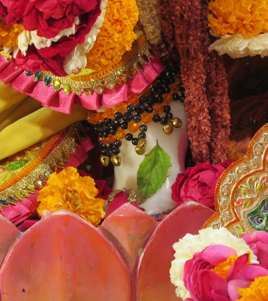 ISKCON Vallabh vidhyanagar Deity Darshan 16 jan 2017 (4)