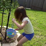 Easter Egg Hunting - 101_2220.JPG