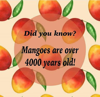 did you know mangoes are over 4000 years old