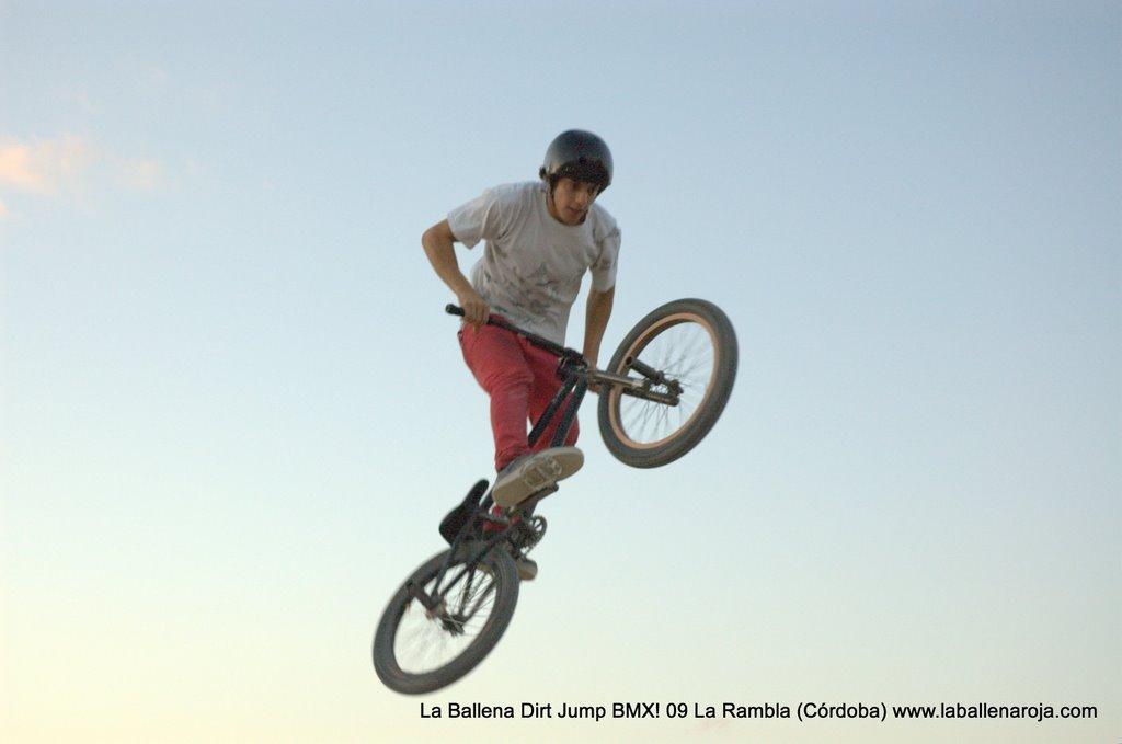 Ballena Dirt Jump BMX 2009 - BMX_09_0161.jpg