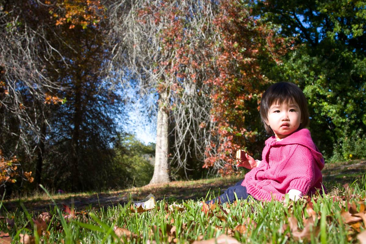 2011 04 25 Mt Lofty Botanic Garden - IMG_6603.jpg