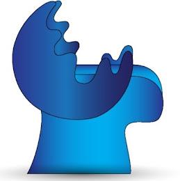 BlueCaribu logo