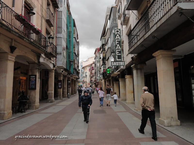 espanha - Passeando pelo norte de Espanha - A Crónica - Página 3 DSC05139