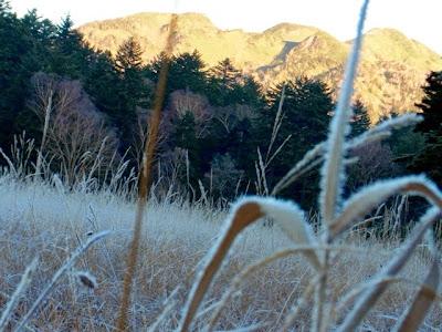 霧氷のすすき野原と朝日を浴びた燧ヶ岳