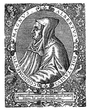 Albertus Magnus, Albertus Magnus