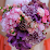 Mariam Frehley's profile photo