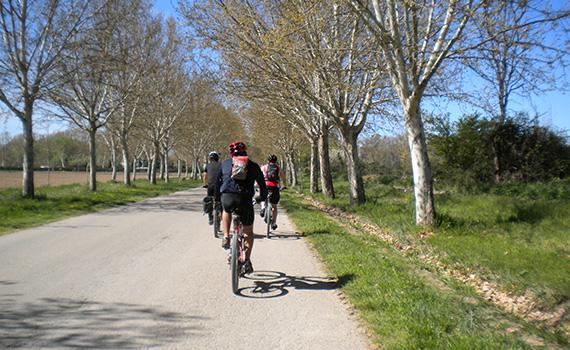 Entrando en Aranjuez