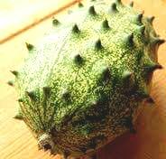 Kiwano (Horn Melon)
