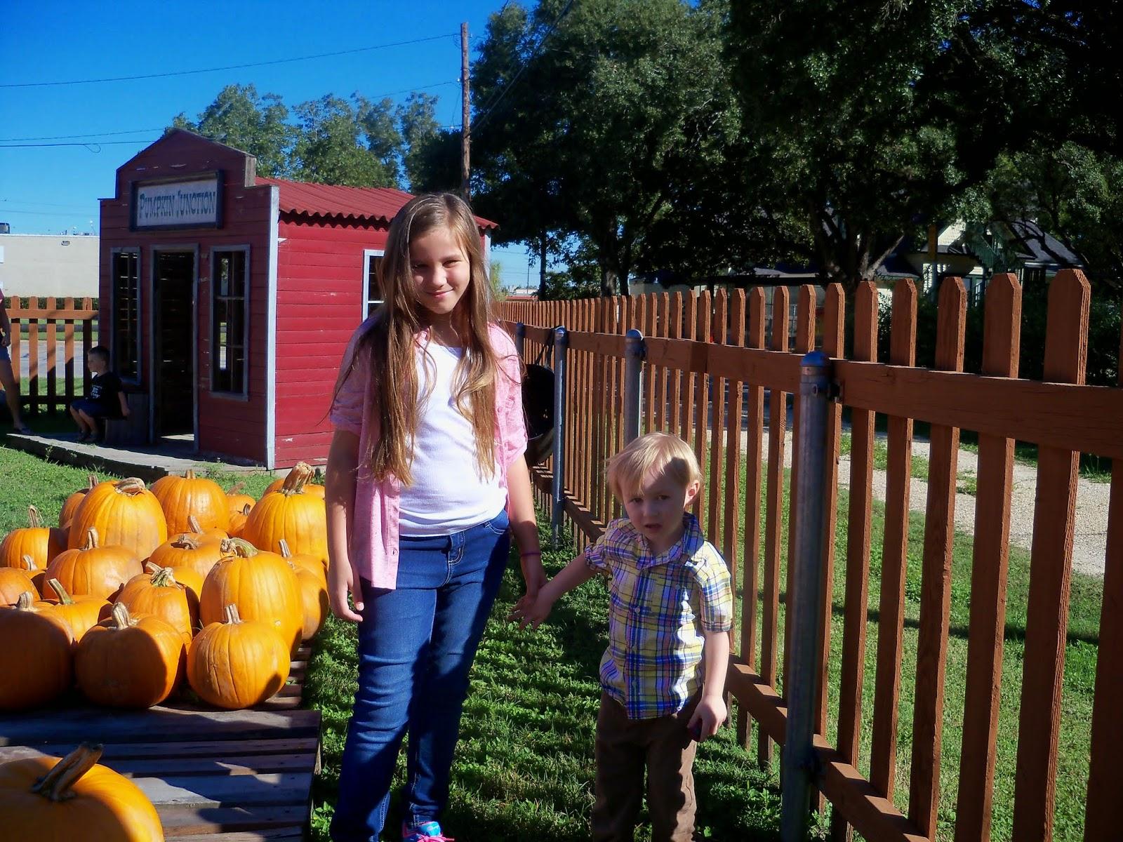 Pumpkin Patch 2014 - 116_4464.JPG