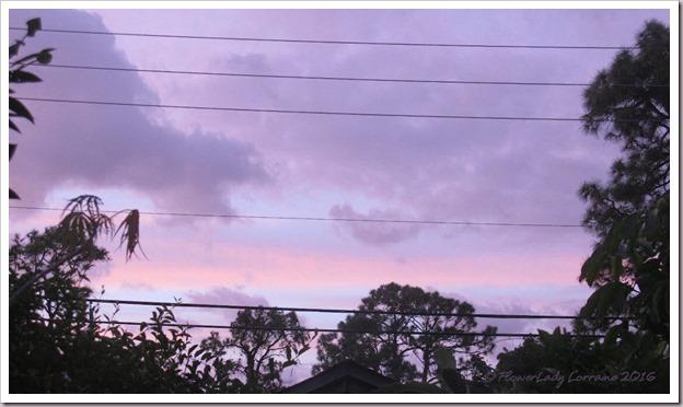 11-05-sunrise