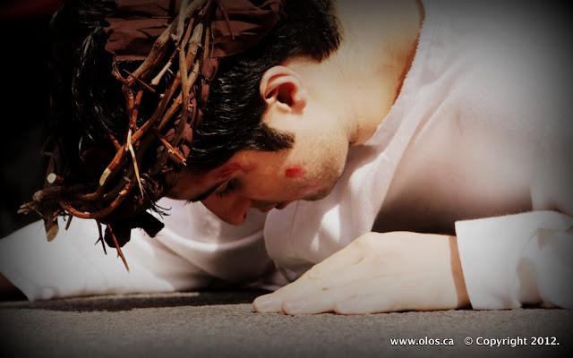 Via Crucis 2012 Trailer - IMG_0281.JPG