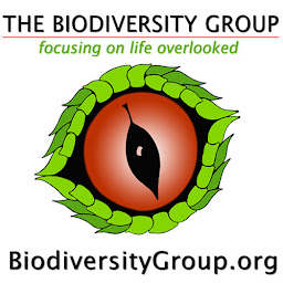 The Biodiversity Group