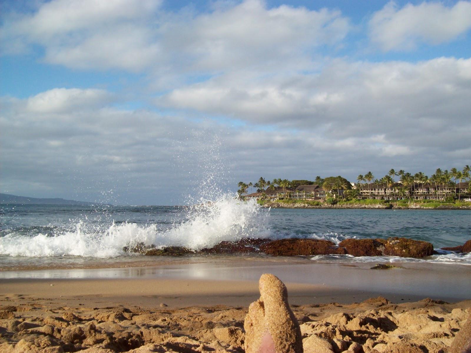 Hawaii Day 7 - 100_7972.JPG