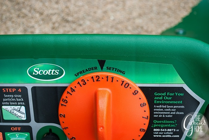 scotts spreader setting for grass seed