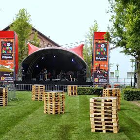 Arendje_2014_Festival_Mundial64.JPG