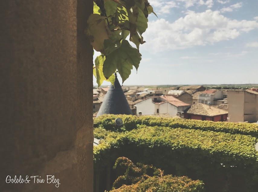 Vistas del Palacio Real de Olite