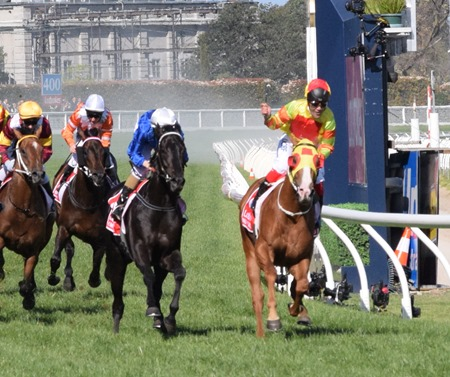 caulfield guineas_finish 6