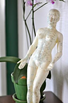 jian shu syracuse acupuncture benefits - photo#44