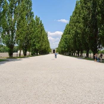 Dachau 17-07-2014 13-53-47.JPG