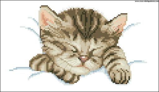 Sleeping cat chart